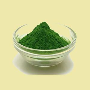 spirulina-powder-essential-living-foods