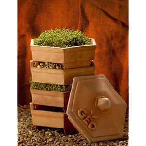 sprouter-terra-cotta-wheatgrass-kits