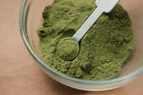stevia-green-powder