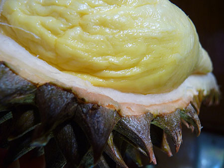 super-fruits-durian