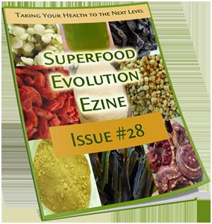 superfood-evolution-magazine
