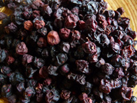 superfood-list-schizandra-berry