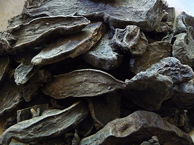 superfoods-list-fo-ti-root