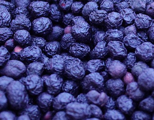 superfruits-maqui-berry