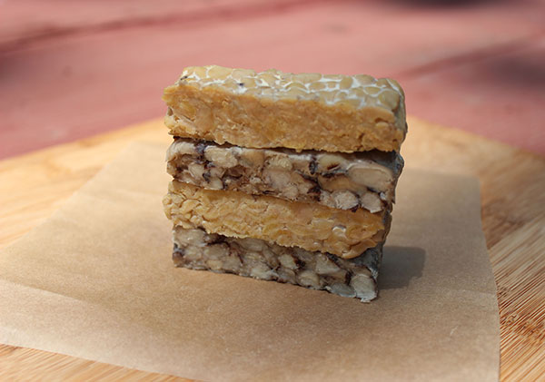 tempeh-homemade-and-commercial