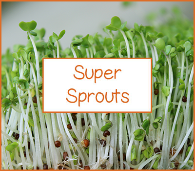 the-super-store-super-sprouts