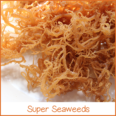 the-superfood-store-super-seaweeds