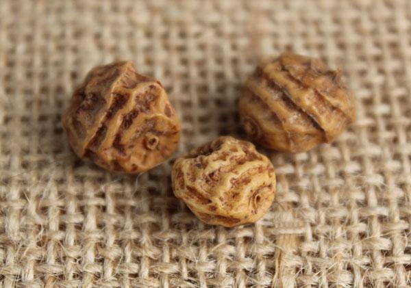 tiger-nut-stripes-close-up