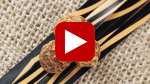 tiger-nuts-thumbnail