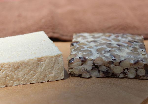 tofu-vs-tempeh
