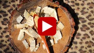 tongkat-ali-thiumbnail-video