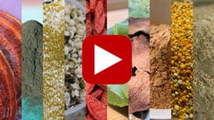 top-10-superfoods-vid