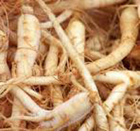 top-superfoods-ginseng