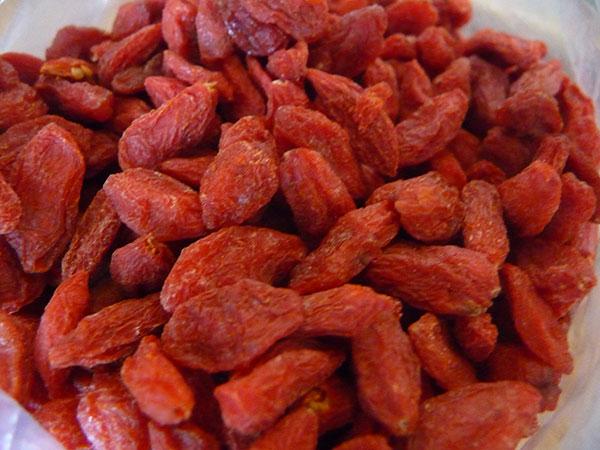 top-superfruits-goji-berries