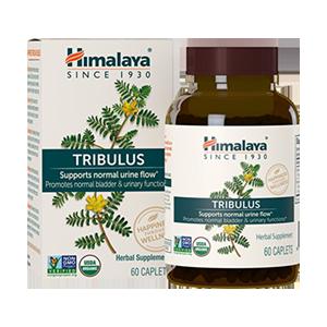 tribulus-organic-himilayan-caps