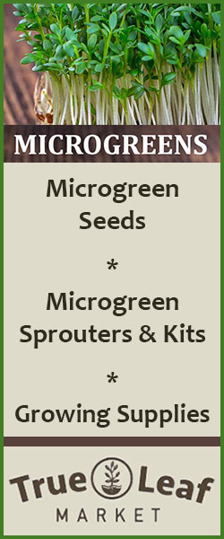 true-leaf-market-microgreens-2
