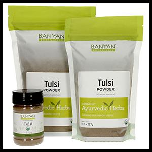 tulsi-leaf-pwder-banyan