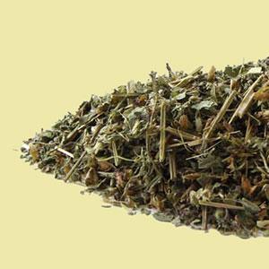 tulsi-holy-basil-rama-mountain-rose-herbs