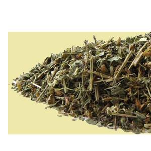 Tulsi Tea Recipe, Benefits, Sacred Use and Types of Tulsi