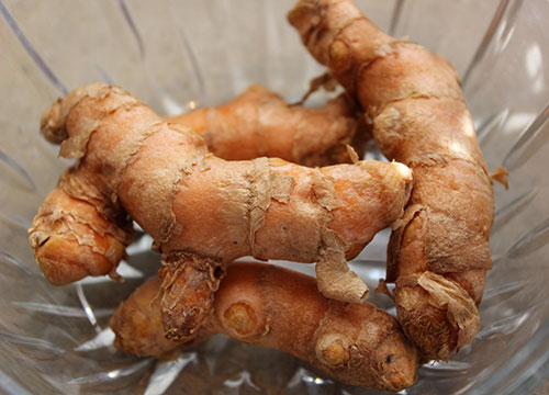 turmeric-root-fresh-rhizome