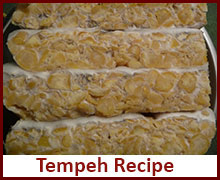 vegan-fermented-food-recipes-tempeh
