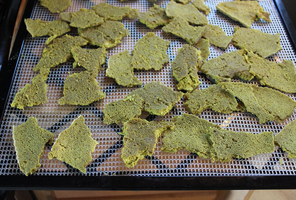 vegan-parmesan-cheese-dehydrator-pieces