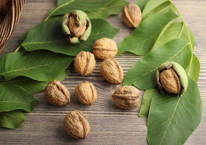 english-walnuts-benefits