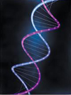 what causes aging telomere strand