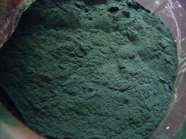 what-is-spirulina-algae-benefits