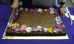 Edible Flowers For Cakes Australia The Best Ideas