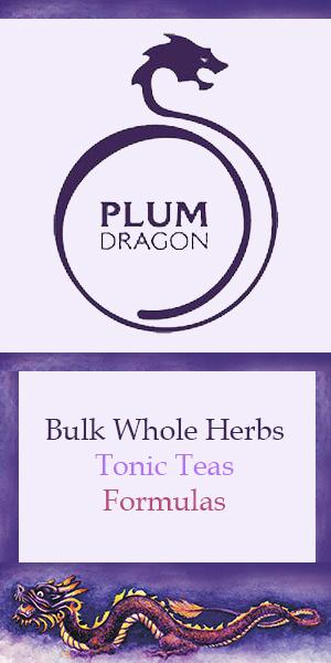 Plum Dragon Banner
