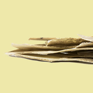 astragalus-slices-mountain-rose