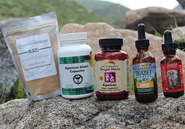 best-agaricus-blazei-supplements