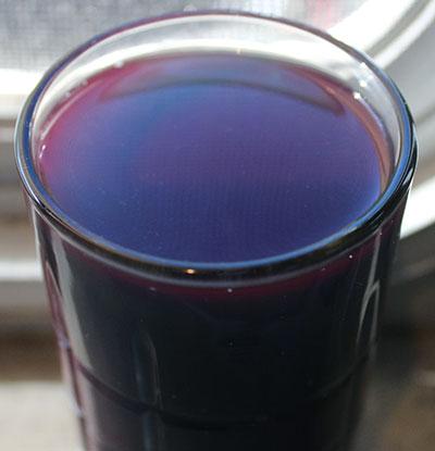 blue-green-algae-drink