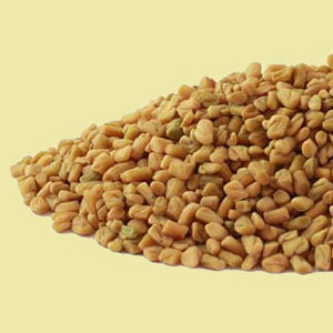 fenugreek-seed-mountain-rose-herbs