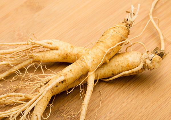 fresh-roots