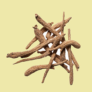 ginseng-cultivated-am-plumdragon-herbs