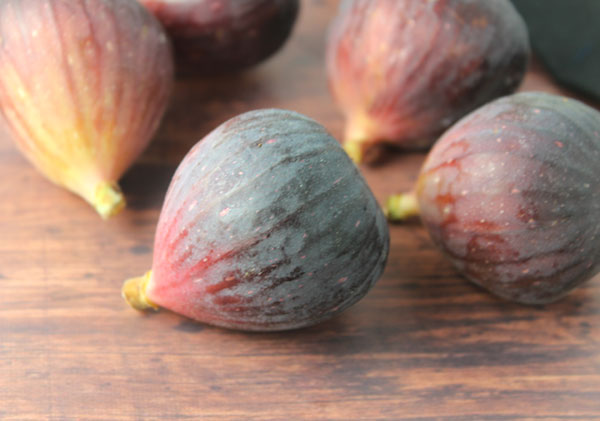 health-benefits-of-figs-black-mission