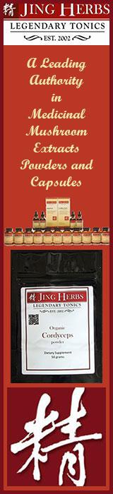 jing-herbs-medicinal-mushrooms-banner