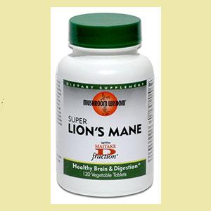 lions-maine-mush-wisdom-live