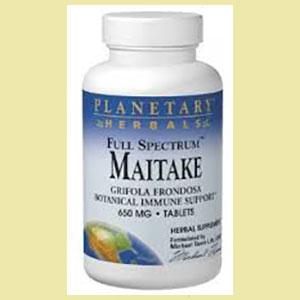 maitake-planetary-house-60