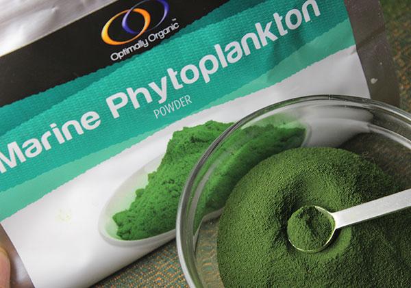 marine-phytoplankton-powder-optimally-organic