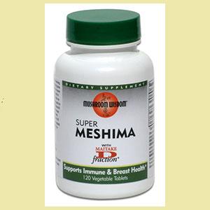 medicinal-mushroom-mesh-mush-wisdom-live