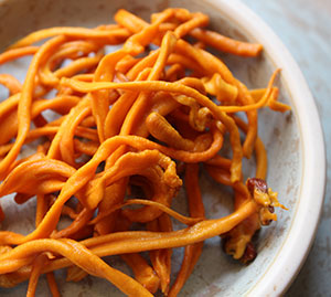 medicinal-mushrooms-list-cordyceps