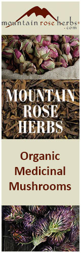 mountain-rose-medicinal-mushrooms-banner
