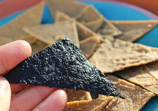 nori-nacho-chip