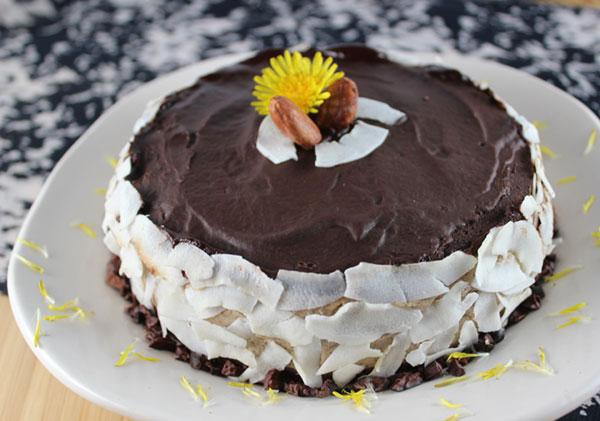 raw-chocolate-coconut-cream-pie-recipe