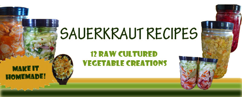 sauerkraut-recipe-book-banner