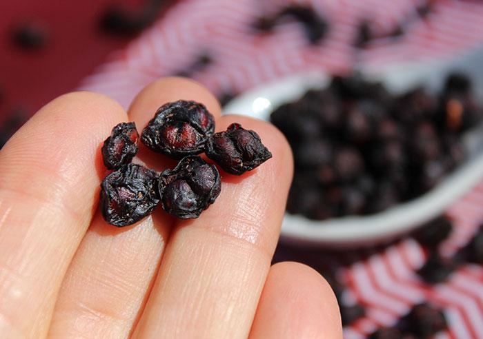 schizandra-berries-close-up