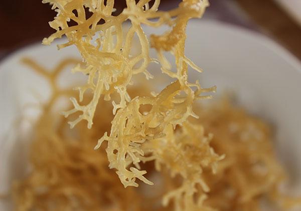 Irish Moss Gel Recipe, A Natural Form of Carrageenan